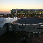 В аэропорту Лондона задержан подозреваемый в подготовке теракта подросток