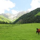 По долине Ауадхара в «город карликов»