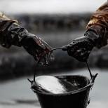 СМИ: тысячи кубометров нефти разлились по заповеднику на юге Израиля