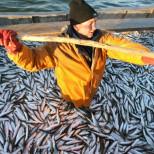 Погрануправление ФСБ РФ в Абхазии и Госкомитет по экологии провели совместный рейд в сухумской бухте